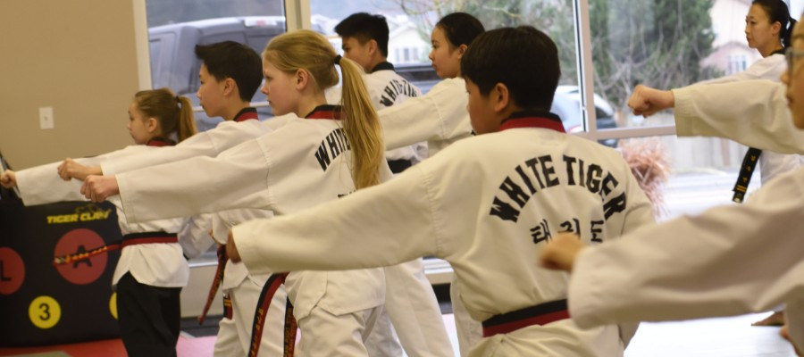 Taekwondo students practicing striking
