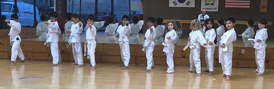 children line up during karate class