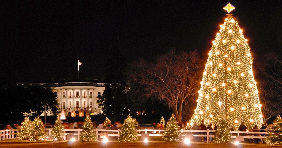 The week ahead.. December 24th
