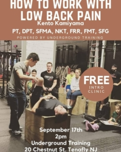FREE INTRO CLINIC: HOW TO WORK WITH LOWER BACK PAIN BY KENTO KAMIYAMA