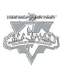 Metro-Detroit-BJJ