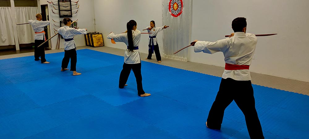 PROGRAMS - World Pa Kua Martial Arts and Health