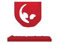 Chiseled Fitness Logo