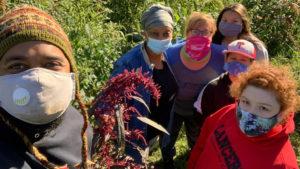 Y leaders volunteer at community garden