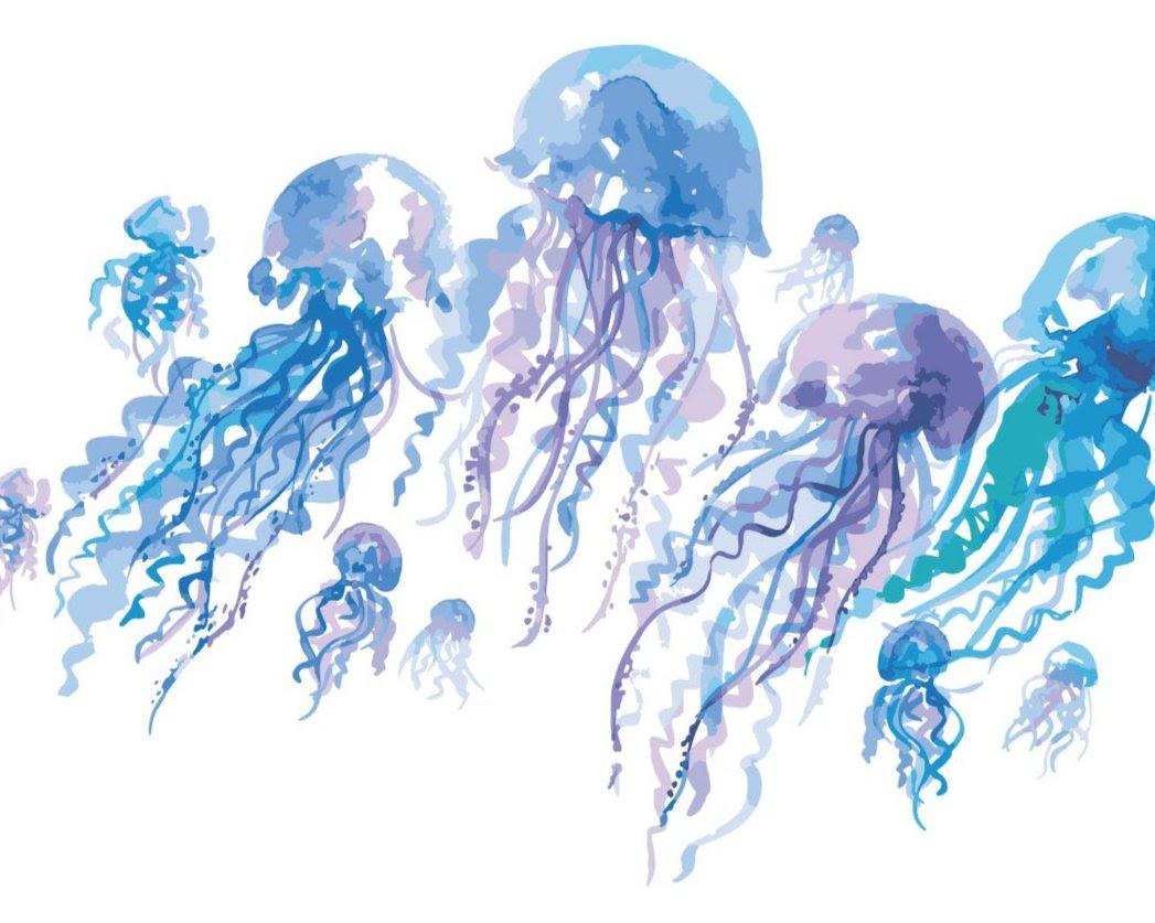 under the sea watercolor