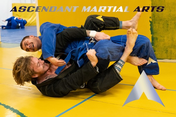 3 Ways Brazilian Jiu Jitsu Builds Better Habits