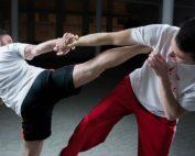 Martial-Arts-as-Self-Defense-Believe-MMA