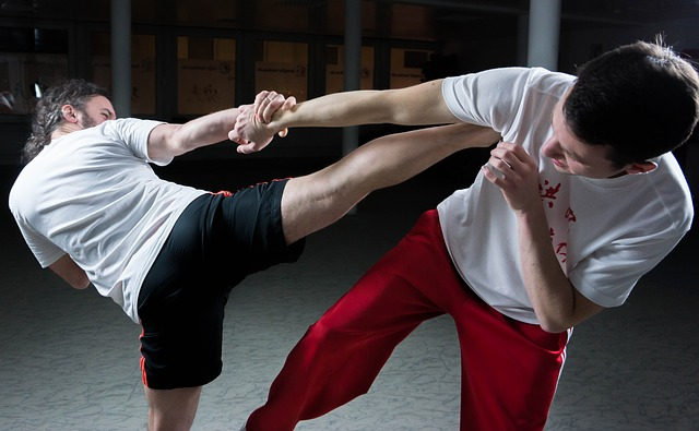 Martial Arts as Self Defense