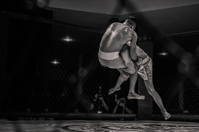 6 Fun Facts About MMA