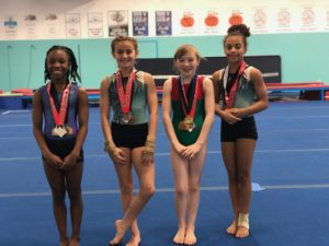 Summerville Family YMCA Gymnastics Team Places at Crown of the Carolinas