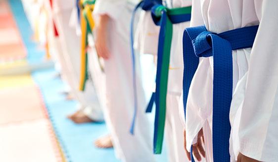 Gichin Funakoshi 20 Guiding Principles Of Karatedo