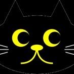 Indies Cat