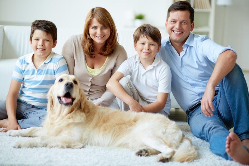 Vet pet insurance