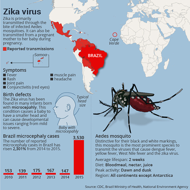Zika Virus: Past, Present, and Future on