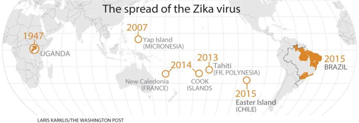 Zika Virus: Past, Present, and Future