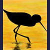Shorebird at sunset