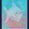 White collared Boredfish