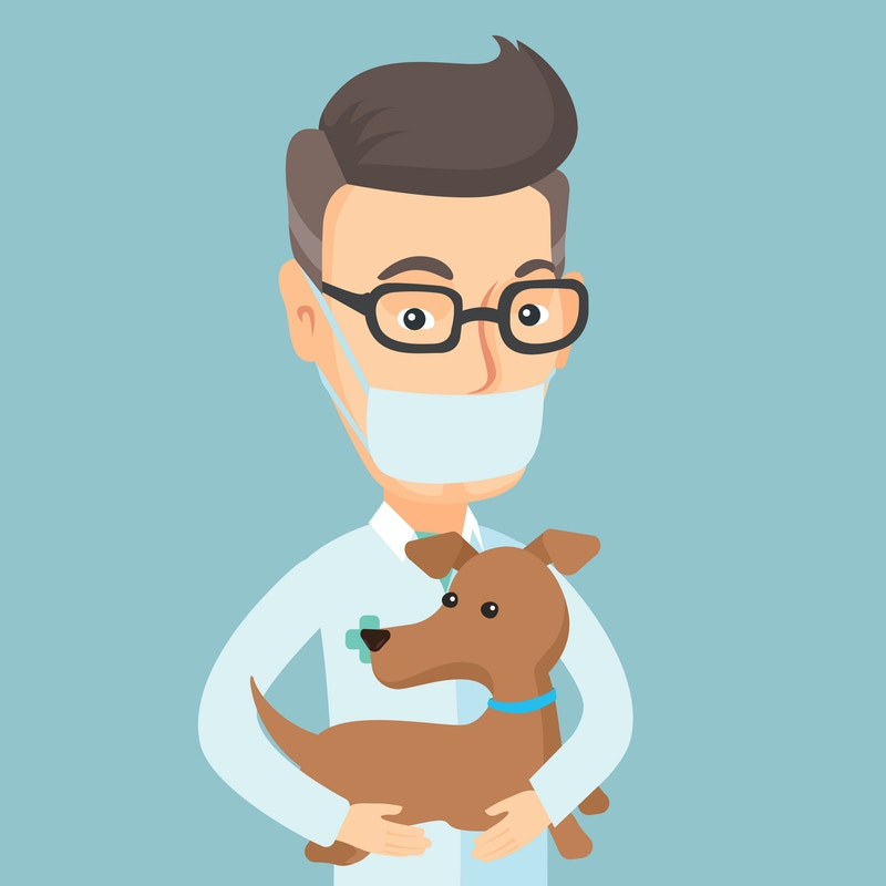Pet spay clinic