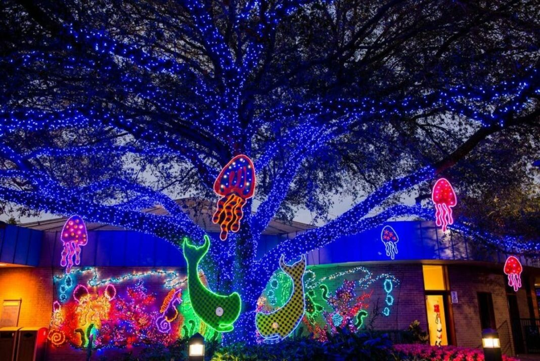 Christmas Events Houston 2019.6 Winter Events In Houston
