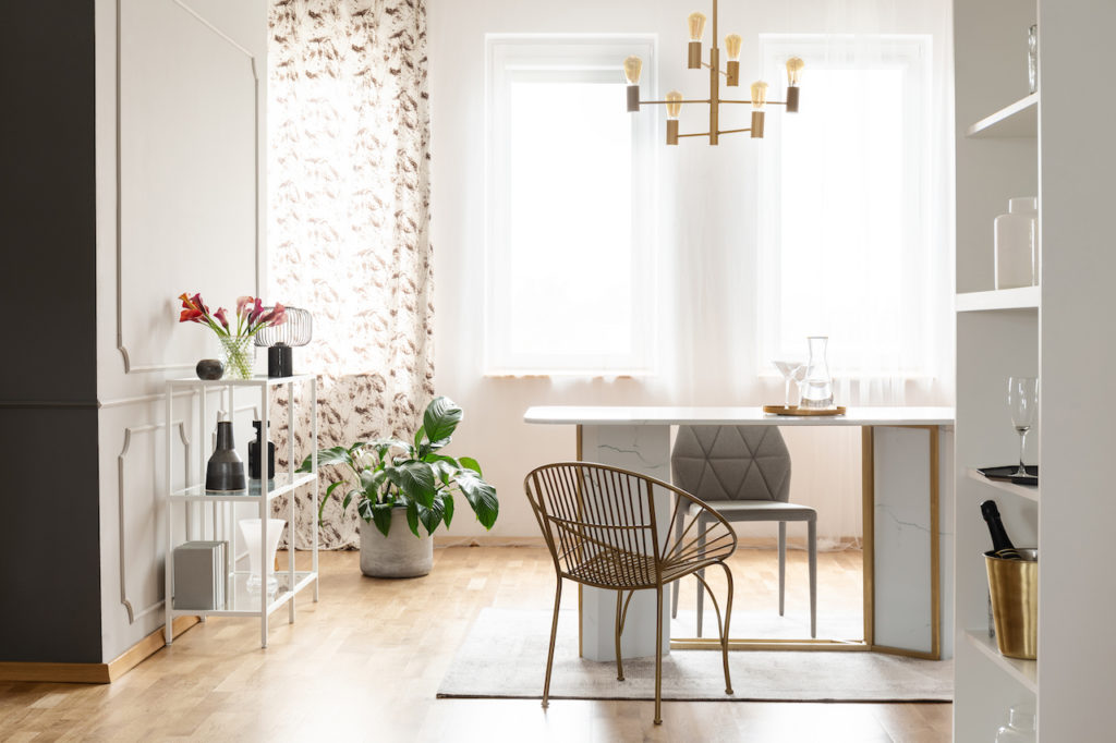 furnished living and dining room