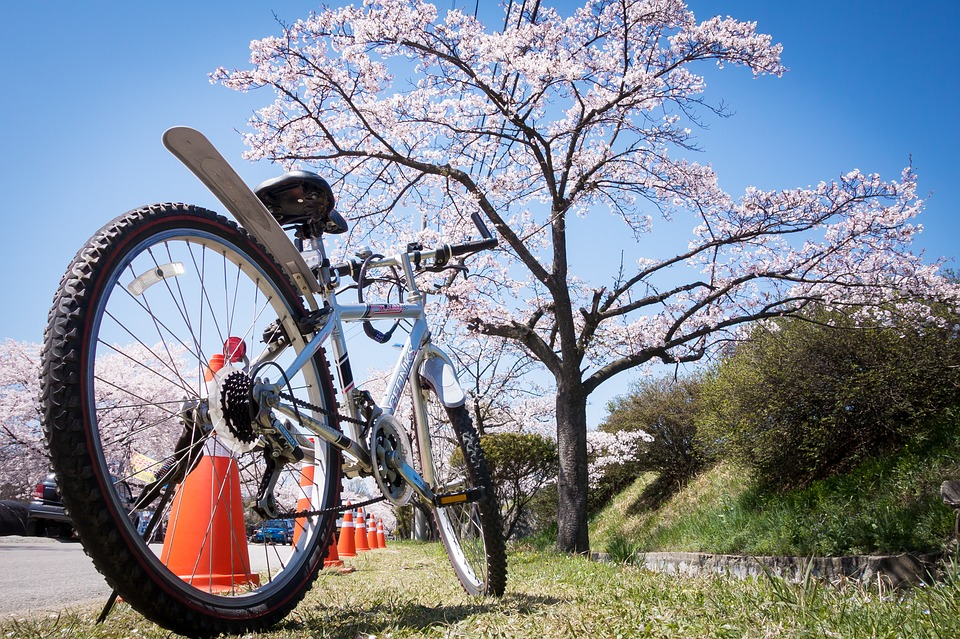 Spring Cycling featured image