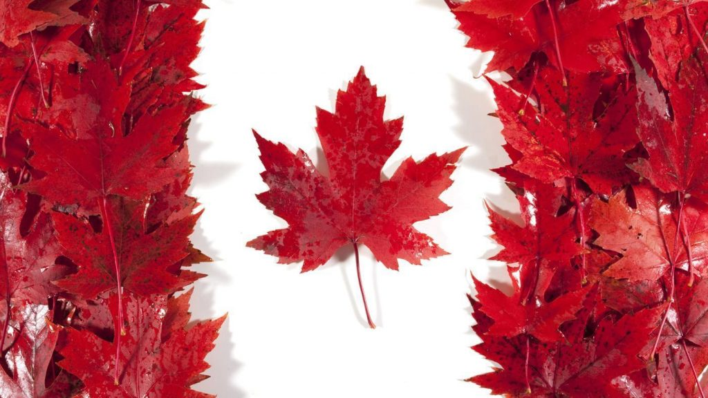 Celebrating The Colourful History Of The Canadian Flag In Cobourg featured image