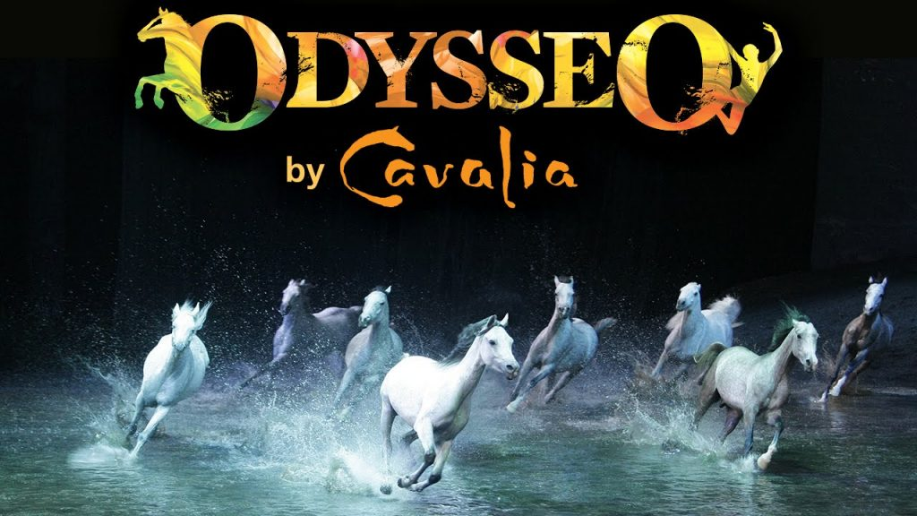Behind the Scenes of Odysseo! featured image