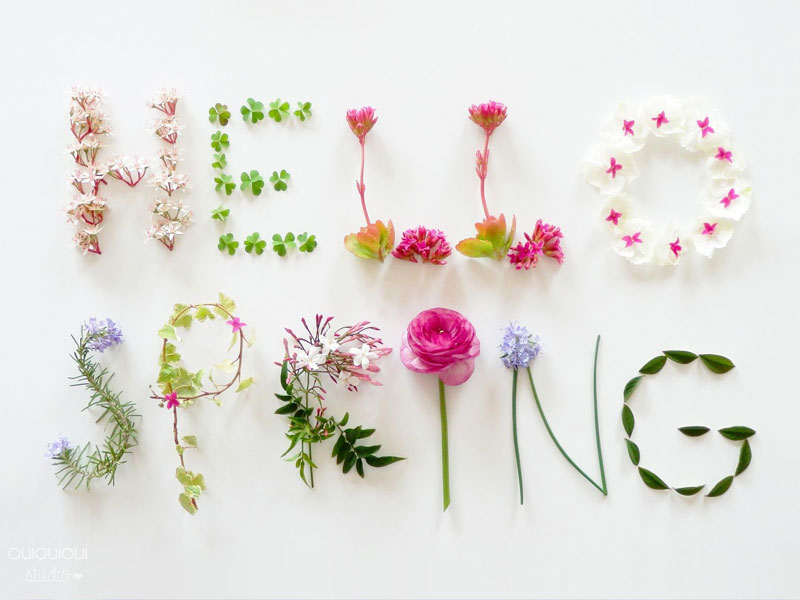Proud Sponsor of these Spring Events… featured image