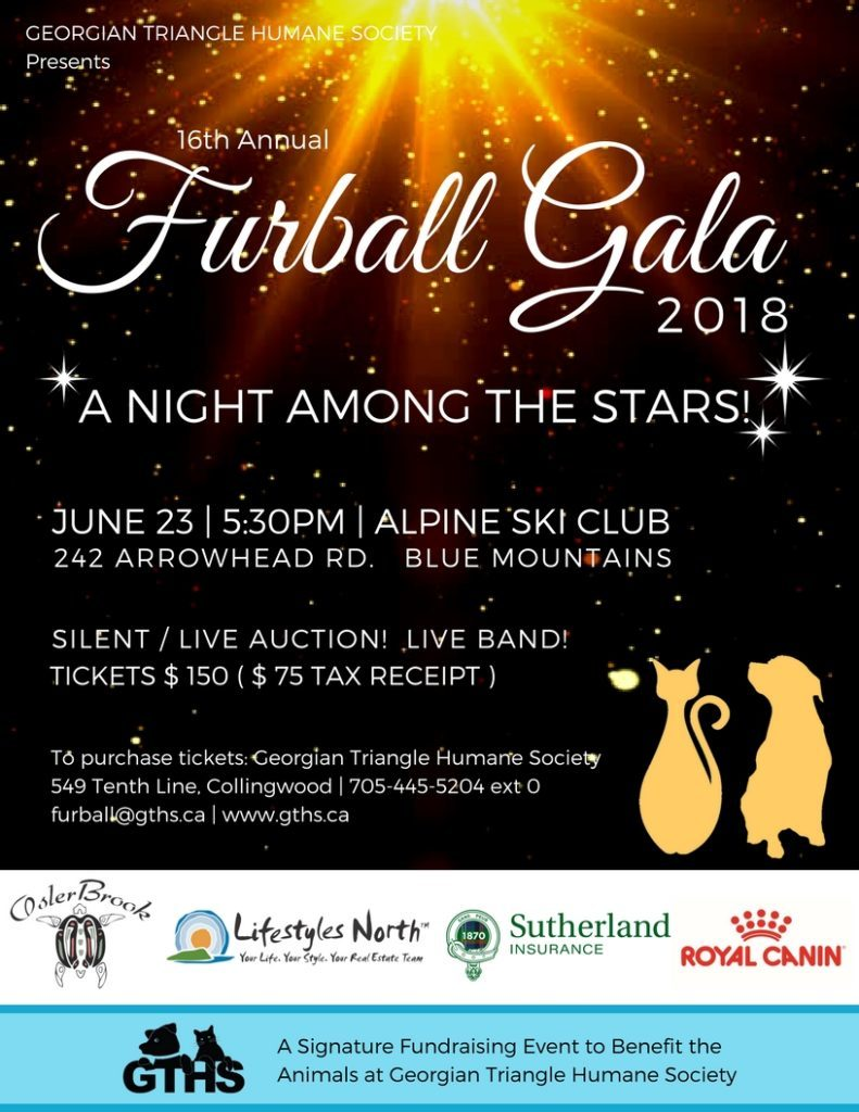 """""""A Night Among The Stars"""" Raising Money For The Georgian Triangle Humane Society featured image"""