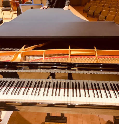 Piano lids are VERY shiny … featured image