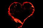 valentine's-day--red