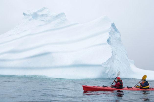 iceberg-newfoundland3