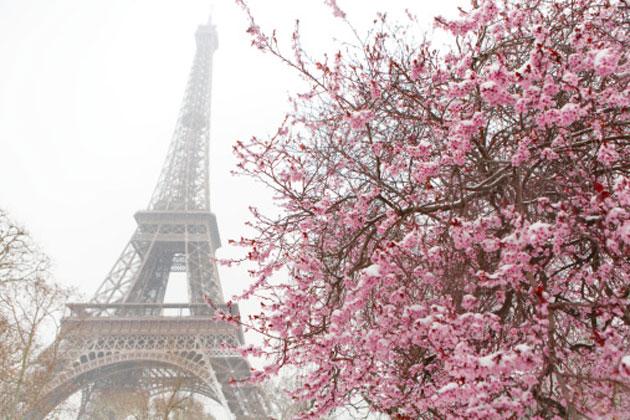 paris-spring-9