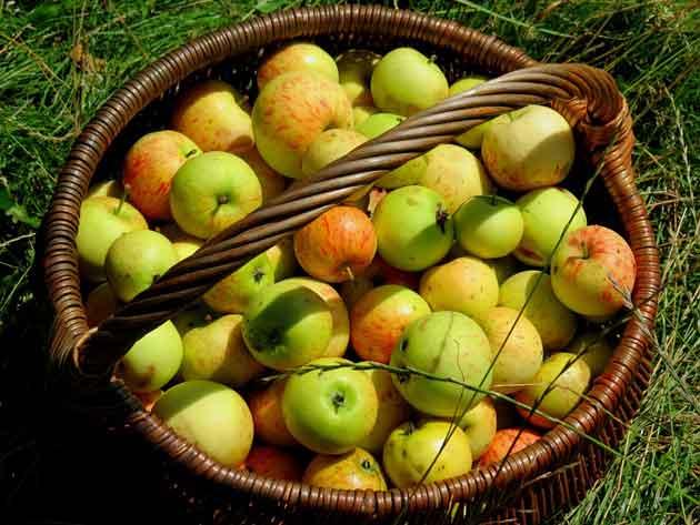 food-fruit-938363_960_720