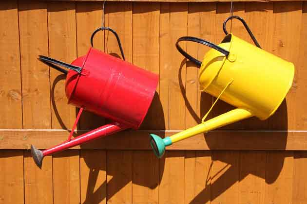 food-watering-can-848223_960_720