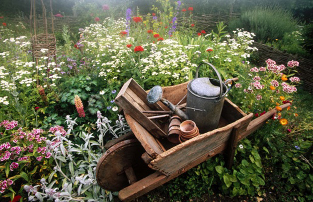 garden-antique-wheel-barrel