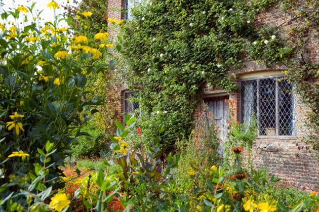 garden-perenniels