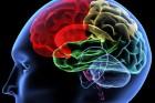 AP-mild-cognitive-impairment