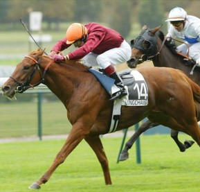PIC-Race-Horse-Action-01_630x500