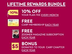 AD_Cityfone-1303_Rewards