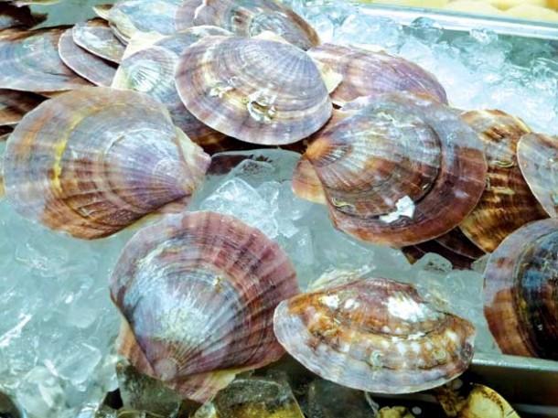 HR-Shellfish-feature_JP-P1010736