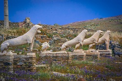 The Avenue of the Lions at Delos