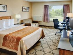 Newly Renovated Comfort Inn