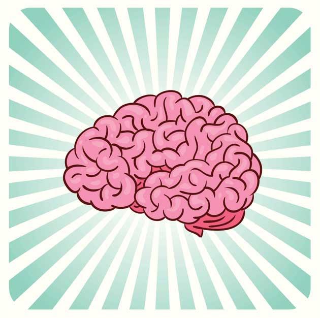 Brain_HR-165968797