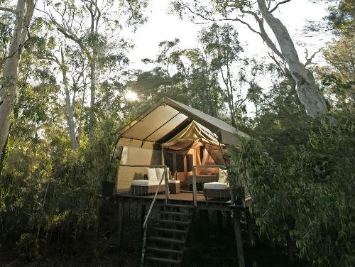 Paperbark Camp Jervis Bay