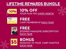 Zoomer_Article_Image2_Rewards_Oct2013