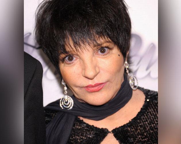 Liza Minelli on Ellen Controversy