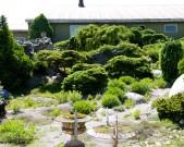 Dry-garden