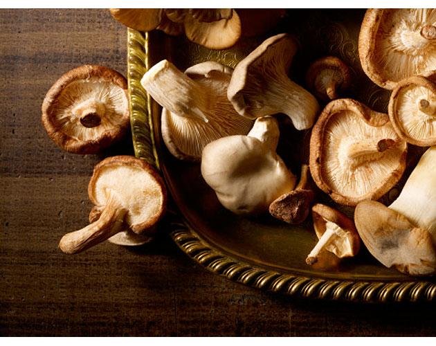 Mushroom-Crusted Sole