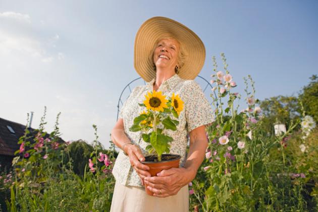 woman-garden-sunflowers